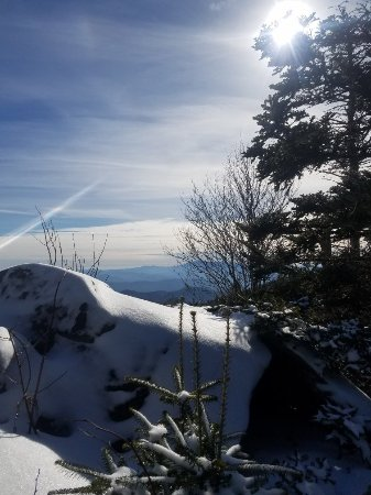 Roan Mountain, TN: 20180203_144119_large.jpg