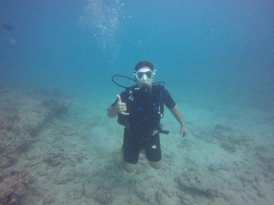Oahu Diving: 034_large.jpg