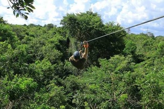 Extreme Zip Line Adventure: images (1)_large.jpg