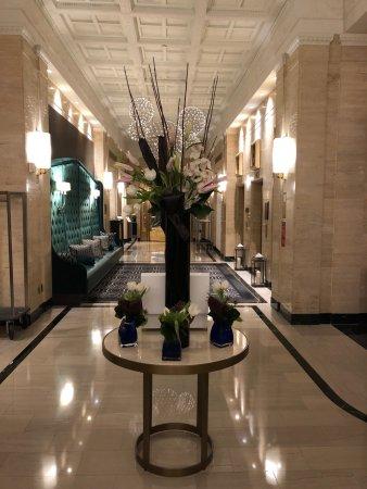 Sofitel Washington DC: Lobby