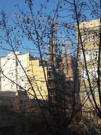Hostemplo Sagrada Familia: 20180131_171355_large.jpg