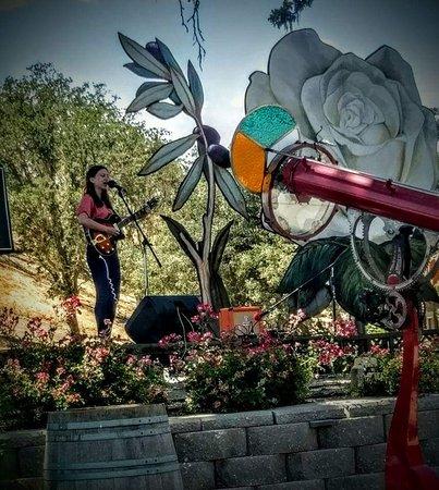 Sculpterra Winery & Sculpture Garden: Casual concerts
