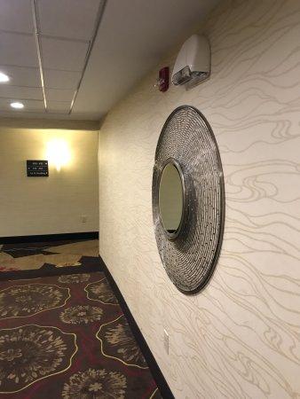 Hampton Inn & Suites Saginaw: Elevator waiting area