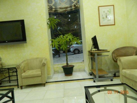 Hotel Avenida Park : Loby