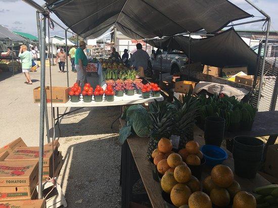 Ortiz Avenue Flea Market