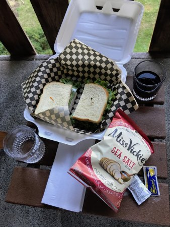 Quinault Mercantile: Our sandwich and wine