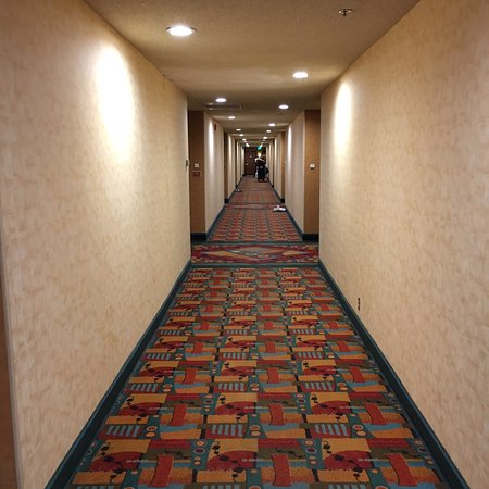 DoubleTree by Hilton Bakersfield: photo7.jpg