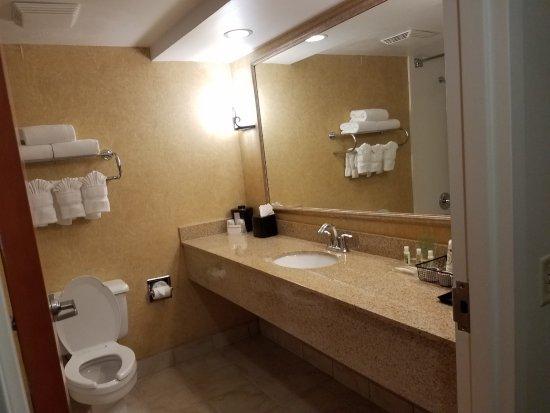 巴爾的摩華盛頓國際機場假日飯店照片