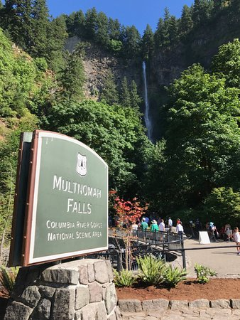 Multnomah Falls from the road
