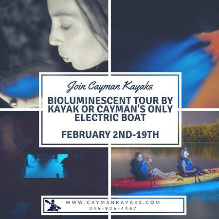 Bioluminescent Bay Tours Grand Cayman