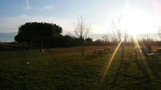 Porto Tolle, Italie : Area picnic di fronte al centro visitatori