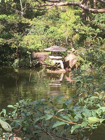 Morikami Gardens - Picture of Morikami Museum & Japanese Gardens ...