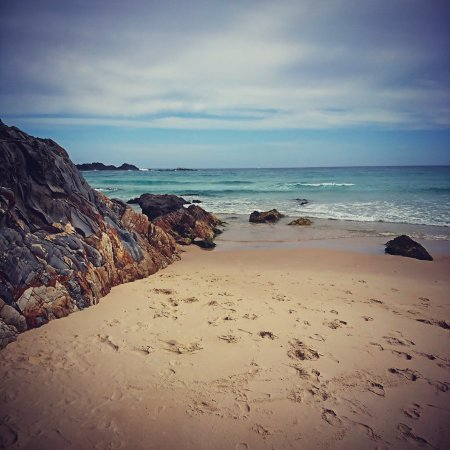Forster, Australia: The magic of Seal Rocks