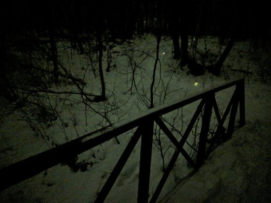 Dundas, MN: Candle lit trail into the woods from the bridge