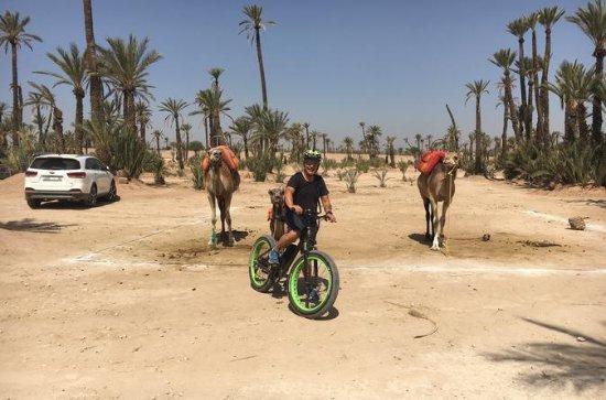Fat Bikes Adventure from Marrakech