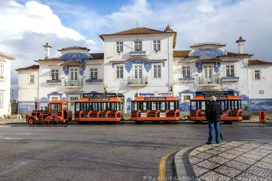 Aveiro Railway Station : アヴェイロ駅のアズレージョ