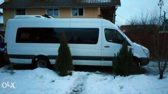 Popa Transporturi