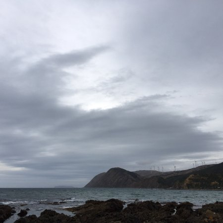 Makara Beach: photo1.jpg