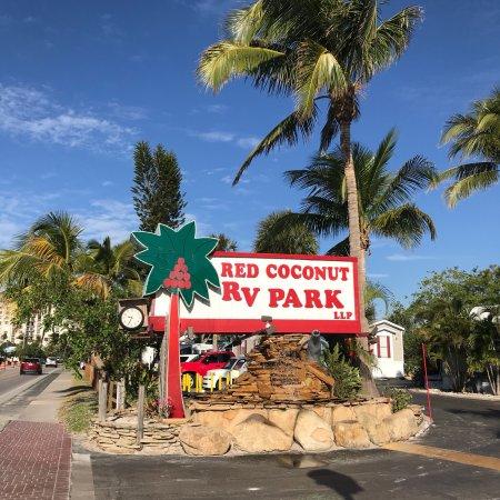 Red Coconut RV Park: photo1.jpg