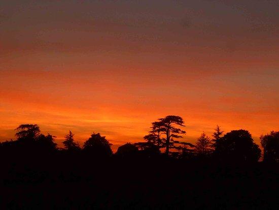 Saint-Michel-de-Fronsac, France: Couché de soleil sur le parc du château