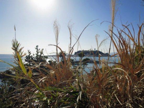 Koyurugi Shrine: 小動神社から見る江の島と海