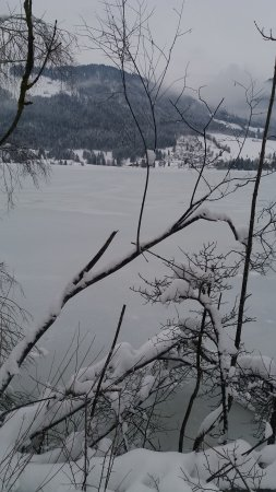 Mountain Inn: Frozen lake in Walchsee - cold day but just beautiful!