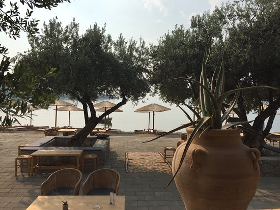 Κόρφος, Ελλάδα: EXO allday beach-bar and restaurant