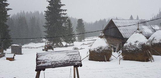 Campeni, Romania: 20180204_090454_large.jpg