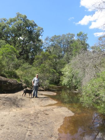 Megalong Valley Tearooms: Cooling off by the creek.