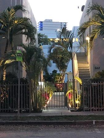 Luxury Miami Beach Apartments By Michigan Prices
