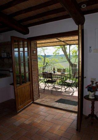 San Giovanni d'Asso, Italy: vista dalla sala  dell'appartamento Orfeo