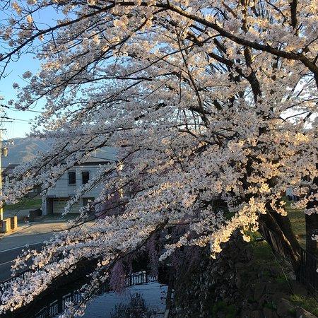 Takashima Castle: photo1.jpg