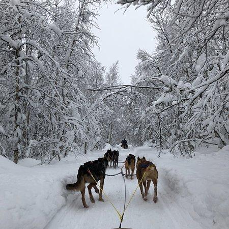 Meltaus, Suomi: photo2.jpg