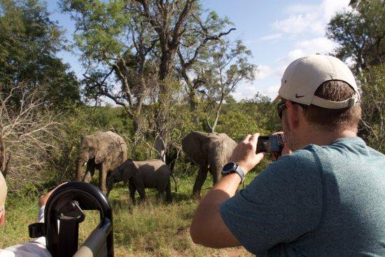 Ulusaba Private Game Reserve Photo