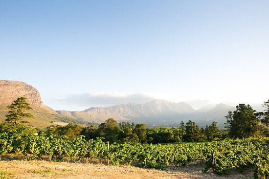 Franschhoek, Sudáfrica: Views are breath taking