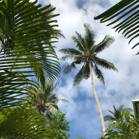 Pinnacle Koh Tao Resort: photo1.jpg