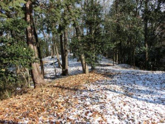 Akechi Nagayama Castle Ruins: ところどころ雪が少し積もっていました
