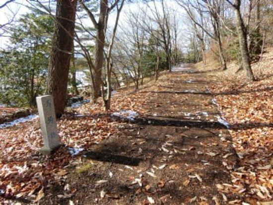 Akechi Nagayama Castle Ruins: 馬場跡