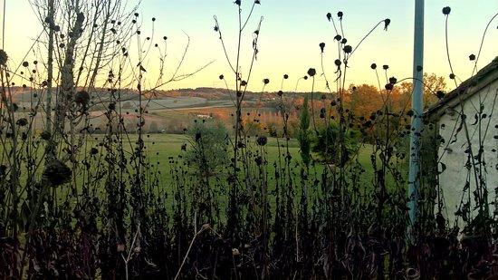 Auriac de Bourzac, France : vue sur le paysage à l'automne
