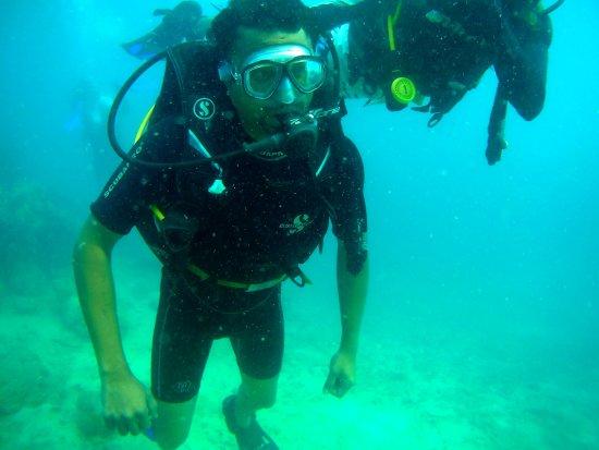 Blue Corals Dive: scuba-still-7