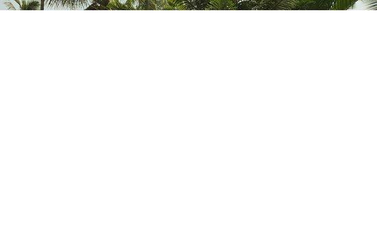 Certification Yoga Alliance International Picture Of Yog Temple Bardez Tripadvisor