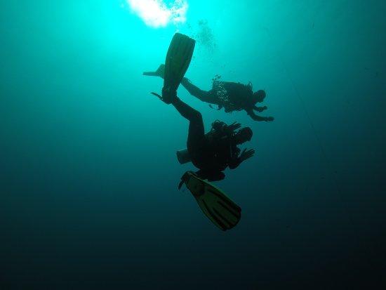 WaterColors Boracay Dive Resort: Diving