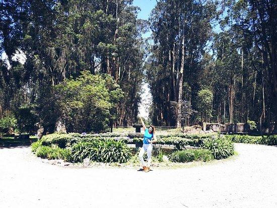 Lasso, Эквадор: La entrada te traslada a un lugar alejado de la realidad.