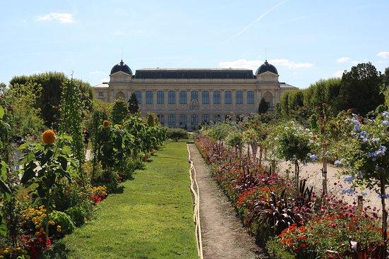 Jardin des plantes paris 2018 ce qu 39 il faut savoir pour votre visite tripadvisor - Jardin des plantes paris horaires ...