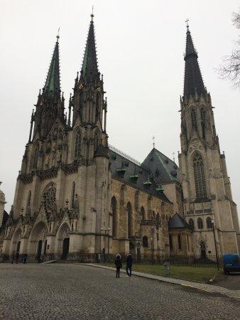 St. Wenceslas Cathedral: Katedrála sv. Václava