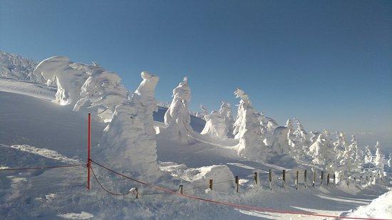 對初學者而言是充滿挑戰的滑雪場