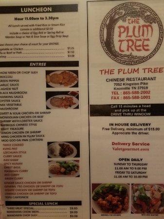 Plum Tree Chinese Restaurant: 20180203_145602_large.jpg