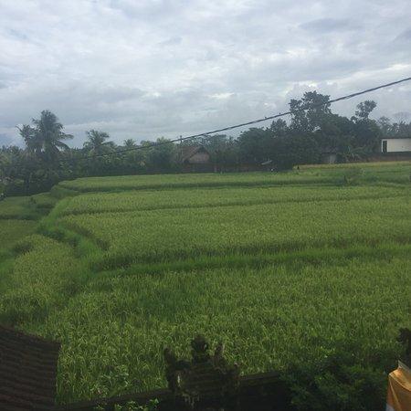 Mas, Indonesien: photo0.jpg