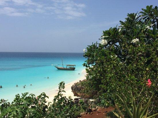 Safaris-R-Us: Northern Zanzibar