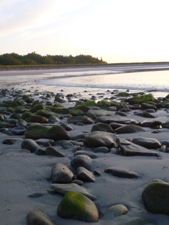 Long Island, Мэн: Andrews Beach Just After Dawn